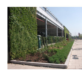 M&S Cheshire Oaks green wall
